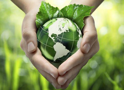 Environmental Management – Legislation